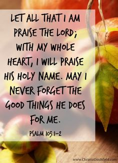 Psalm 103:1-2 (NLT)  ~  Let all that I am praise the Lord;     with my whole heart, I will praise his holy name. Let all that I am praise the Lord;     may I never forget the good things he does for me.