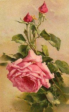 How To Select Little One Dresses Catherine Klein postcards Art Floral, Catherine Klein, Clip Art Vintage, Vintage Diy, Vintage Images, Impressions Botaniques, Vintage Rosen, Rose Pictures, Rose Art
