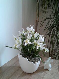 Sněženky ve skořápce / Zboží prodejce bejdzi Diy Crafts Hacks, Diy And Crafts, Plant Decor, Easter Crafts, Spring, Vintage, Craft, Floral Arrangements, Centerpieces