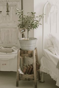 Tree in a bucket. Interesting idea for  shabby chic rustic French country decor.  Take it, distress it and the result will never let you down.. Nostalgic, classy and always in fashion..