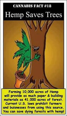 Hemp saves trees. save the trees.