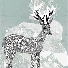 Tobias G�bel - deer illustration