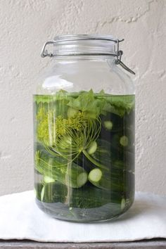 Fermenting Revolution: The Universal Fermented Pickle Recipe - Real Food - MOTHER EARTH NEWS