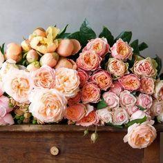 Rosen über Rosen. #tollwasblumenmachen
