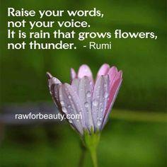 Words not voice
