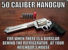50 caliber handgun, for when there is a burglar behind the refrigerator...at your neighbor's house