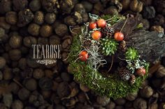Mindenszenteki koszorú   all hallows wreath