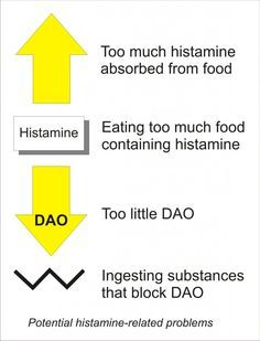 Diagram showing four potential histamine problems: too much absorbed from food, eating too much histamine-containing food, having too little DAO, or ingesting substances that block DAO; by Candace Van Auken Anti Histamine Foods, Clean Your Liver, Cidp, Mast Cell Activation Syndrome, Leaky Gut Syndrome, Ate Too Much, Anti Inflammatory Diet, Fatty Liver, Health
