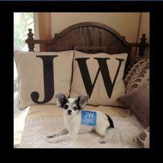 www.jw.org...aww I love this!