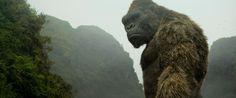 Kong: A Ilha da Caveira   Artista revela artes de conceito do filme   O Vício