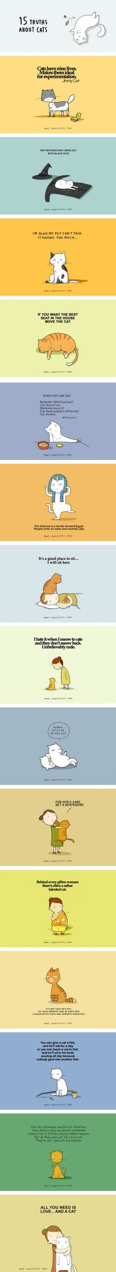 15 Illustrated Truths About Cats. All you need is love....and a cat