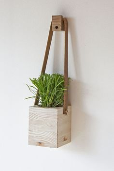 1 hanging wall planter from @factorytwentyone