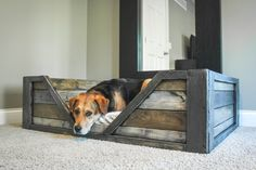 Wooden Pallet Furniture Ideas Pallet Bed Pet Furniture Diy Shareable 23 Unique Diy Pallet Furniture Ideas that Will Inspire You Pallet Dog Beds, Dog Food Container, Wooden Pallet Furniture, Pallet Wood, Rustic Furniture, Wood Pallets, Diy Dog Bed, Diy Pallet Projects, Furniture Projects