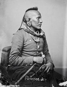 De Pawnee wordt nog steeds beschouwd als een volk van de open steppen, zoals de Cheyenne, Arapaho en de Lakota. De traditionele levenswijze van de Pawnee wijkt toch dermate af van voornoemde volkeren om deze classificatie aan te blijven hangen. Alle drie bovenvermelde volkeren waren namelijk grotendeels nomadisch en leefden van de jacht op de Bad Lands, in tegenstelling tot de Pawnee, die zich van oorsprong vestigde op vaste locaties nabij beekdalen en rivieren.  De Pawnee was een volk met…