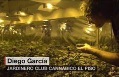 "So the first ""cannabis club"" of Uruguay works | Marijuana News | Cannabis Industry & Legalization News | 420 Intel"