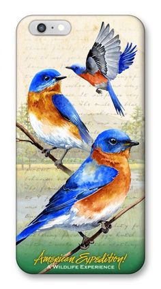 Bluebird iPhone 6 & 6s Vintage Bird Series Phone Case - American Expedition