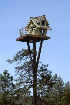 unique tree house