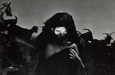 Paulo Nozolino, untitled, 1982