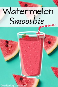 When the temperature gets to htere is the perfect refreshing choice! Watermelon Smoothies, Watermelon Recipes, Cantaloupe, Gardening, Fruit, Vegetables, Food, Garten, Veggies