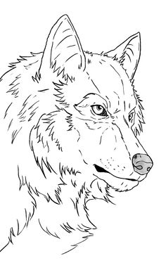 Animal Sketches, Animal Drawings, Drawing Sketches, Pencil Drawings, Wolf Sketch, Wolf Painting, Ship Drawing, Pyrography Patterns, Sketch Inspiration