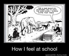 This is what is wrong with standardized testing...