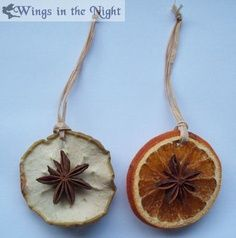 Yule tree ornaments. Dried apple and orange peels with anise in the center.