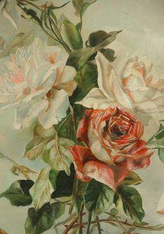 {Pedaços de beleza: rosas}