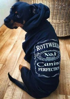 """Click visit site and Check out Best """"Rottweiler"""" T-shirts. This website is top-notch. Tip: You can search """"your name"""" or """"your favorite shirts"""" at search bar on the top."""
