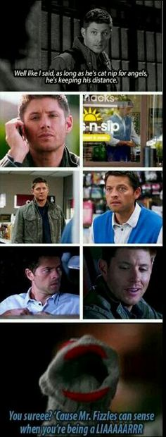 I love the Supernatural fandom ;) It sucks that the mid season finale is next week. :( that means i won't have anything to look forward to each week for a few weeks. D: