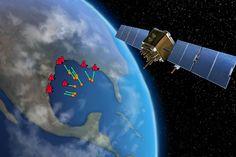 App uses NASA satellites to track sargassum along Texas coastline (Rachel Cunningham Wang, Illustrator-Graduate Assistant) #TAMUresearch
