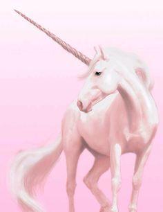 2016/10/13 Unicorn