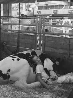 A 15-year-old boy named Mitchell Miner and his cow Audri recently participated in the Iowa State Fair dairy kettle show. Despite their hard work and effort, they finished only fifth out of seven. Feeling exhausted, the duo took a nap, when the boy's father came in and snapped a photo of them snuggling side by side.