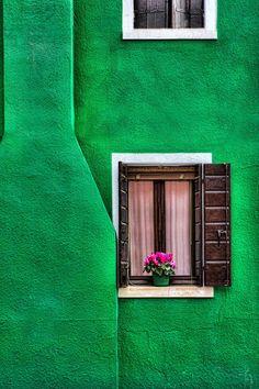 El verde y un detalle.                                                                                                                                                     Más