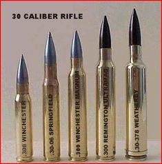 deer rifle caliber comparison - Google Search