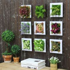 wall Plants Frame - Simulation Flower Frame Artificial Plant Wall Decor Home Garden Wall Hanging. Jardin Vertical Artificial, Artificial Plant Wall, Artificial Flowers, Plant Wall Decor, Frame Wall Decor, Frames On Wall, Diy Wall, Garden Wall Decorations, Display Wall