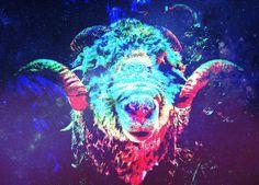 Cosmic sheep