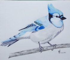 Art Pieces, My Arts, Deviantart, Bird, Artwork, Animals, Instagram, Work Of Art, Animales