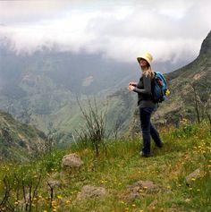 Warum Kondition nicht alles ist: Tipps für deine erste Wanderung auf Madeira | Waldspaziergang