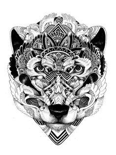 wolf by Iain Macarthur