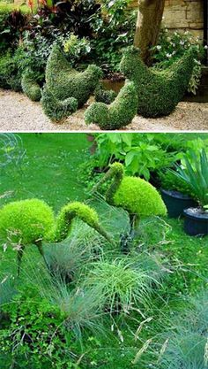 Pretty Up Your Backyard Designs with Topiary Art Adding Gorgeous Garden Decorations