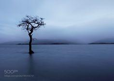 lost in the flood by kennybarker with skywatertravelbluelighttreebeautifulscotlandlong exposureloch lomondtrossachsmilarrochy bay
