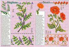 Gallery.ru / Фото #111 - Encyclopedie du point de croix ( Fleurs arbres et feuilles ) - tymannost