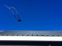 B-kites: Black Jordan