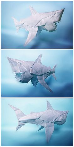 Angry guy =v= Nguyen Hung, Origami, Great White Shark, Making Out, Fighter Jets, Guys, Inspiration, Projects, Artist