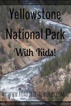 Visiting Yellowstone National Park with kids! Your kids will be amazed by the wildlife, history, scenery and geology.  And it is easy to have an awesome visit! Click through to read how.