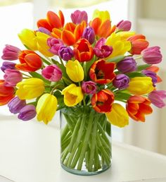 This brightly-colored bouquet filled with over 40 gorgeous #tulips is perfect for putting on display, and will brighten up your home all season long.