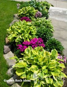 Annual plants front yards & jährliche pflanzen vorgärten & chantiers devant les plantes annuelles & plantas anuales patios delanteros & annual plants perennials, annual p Home Landscaping, Front Yard Landscaping, Inexpensive Landscaping, Natural Landscaping, Commercial Landscaping, Florida Landscaping, Farmhouse Landscaping, Tropical Landscaping, Sidewalk Landscaping