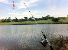 Pega peixe