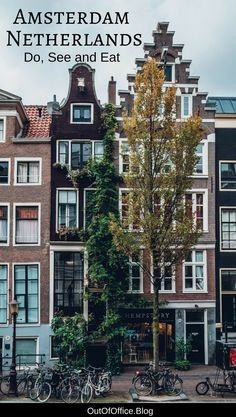 A list of 70 things to do in Amsterdam to ensure your trip is memorable