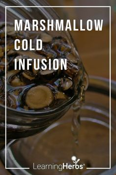 Marshmallow Root Cold Infusion Sore Throat Remedies, Herbal Remedies, Natural Remedies, Medicine Garden, Herbal Medicine, Healing Herbs, Natural Healing, Flaxseed Gel, Home Remedies For Heartburn